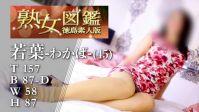 若葉(わかば)(45)